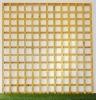 6_-trellis-GOLD-(1)-800